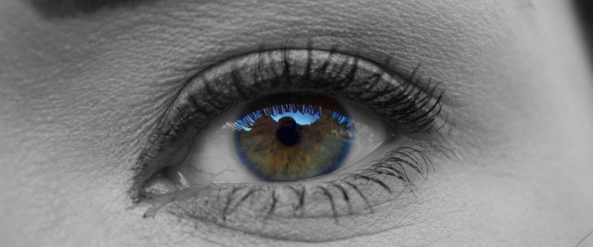 eye-grey_1920x800